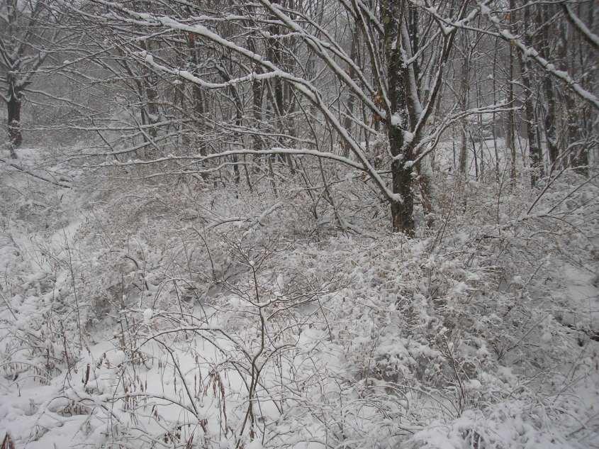 The Catskills, Upstate New York