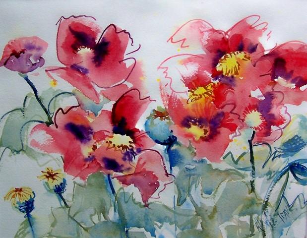 Poppies by Alix Hallman Travis